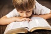 Eye in the Bible
