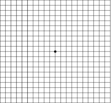 Test8 - Amsler Grid-LR